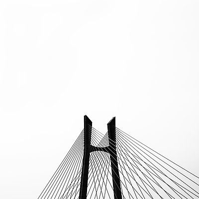 Bridge Study - p1256m2099006 by Sandra Jordan