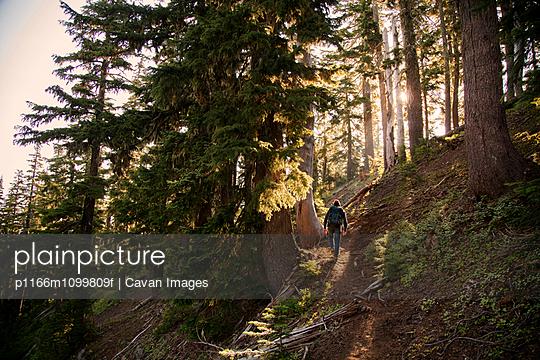 p1166m1099809f von Cavan Images