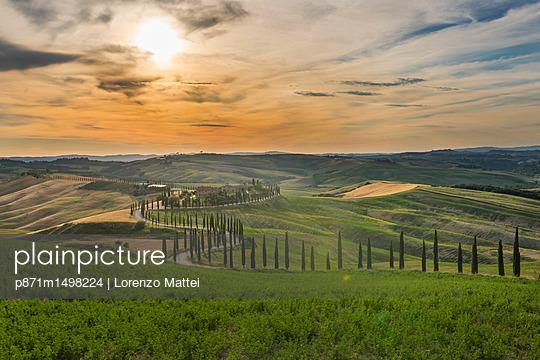 p871m1498224 von Lorenzo Mattei