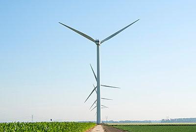 Wind turbines in wind farm in summer, Biddinghuizen, Flevoland, Netherlands - p429m2019453 by Mischa Keijser