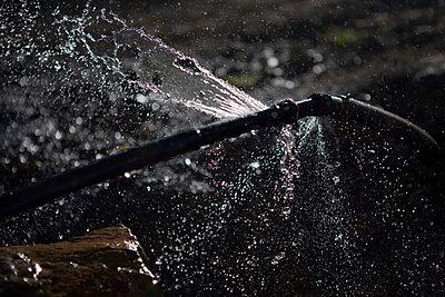 Wasser - p817m758478 von Daniel K Schweitzer