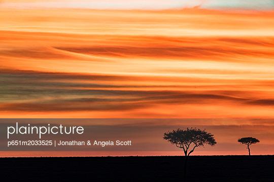 p651m2033525 von Jonathan & Angela Scott