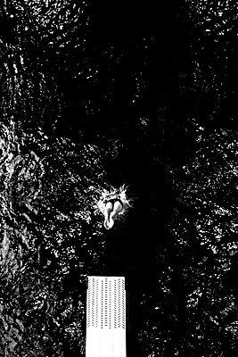 Kopfsprung ins Wasser - p318m1170021 von Christoph Eberle