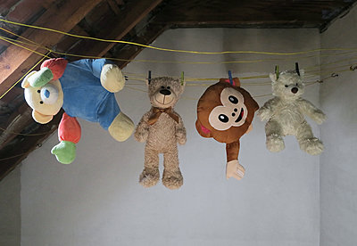 Stuffed animals on a clothesline - p237m1584216 by Thordis Rüggeberg