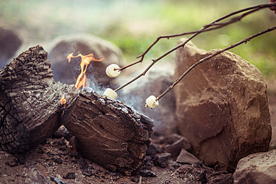 Close-up of marshmallows roasting on campfire in forest - p1166m1231634 by Cavan Images