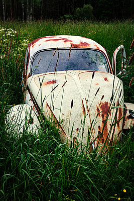 Rusty car - p1168m1109585 by Thomas Günther