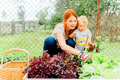 Mother with baby boy working in garden - p312m2049998 by Alicia Swedenborg