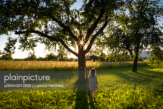 Young girl walking on meadow to tree at summer evening - p300m2012839 von Larissa Veronesi
