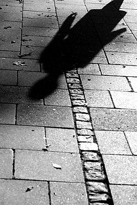 Schatten    - p450m1190902 von Hanka Steidle