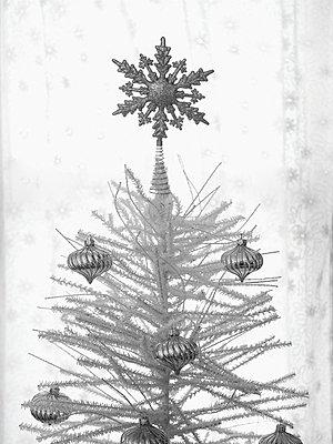 Christmas - p4800084 by Karen Zukowski