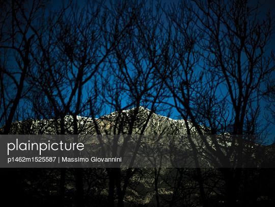 Blick durch Äste auf eine Felswand bei Nacht - p1462m1525587 von Massimo Giovannini