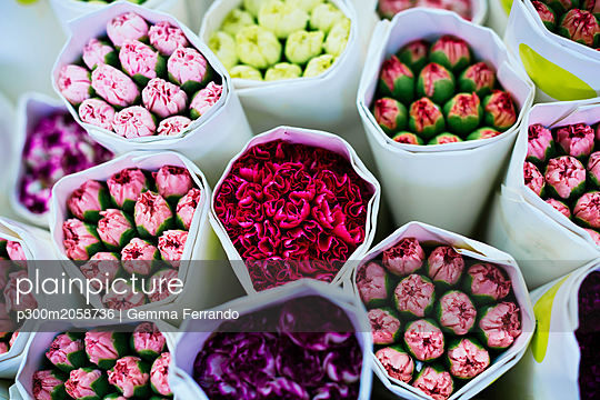 China, Hong Kong, bouquets of colourful flowers at the flower market - p300m2058736 by Gemma Ferrando