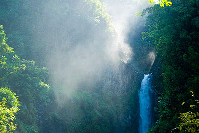 Scenic view of waterfall in forest - p1166m1545012 by Cavan Social
