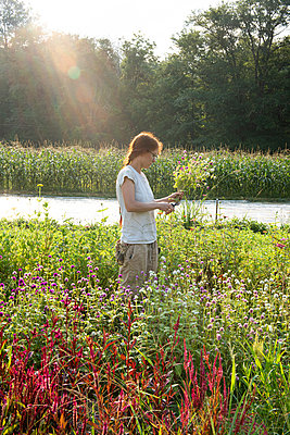 Young female farmer with red hair cuts flowers in the field - p1166m2136445 by Cavan Images