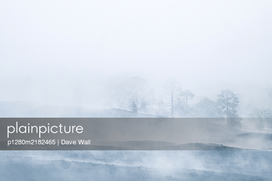 Lava field in the fog - p1280m2182465 by Dave Wall