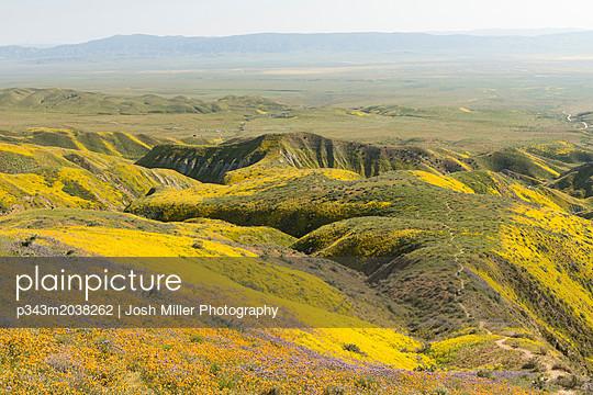 p343m2038262 von Josh Miller Photography