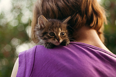 Face of cat sitting on shoulder of woman - p555m1522969 by Dmitriy Bilous