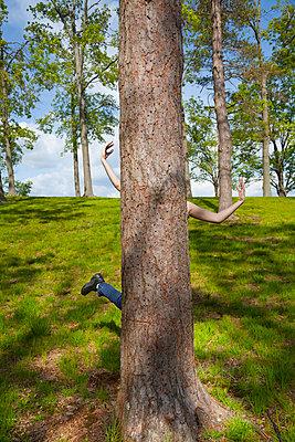 Hinter dem Baum - p397m731443 von Peter Glass