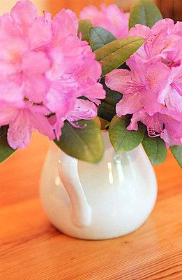 Blumenstrauß - p0660074 von Fabian Hammerl