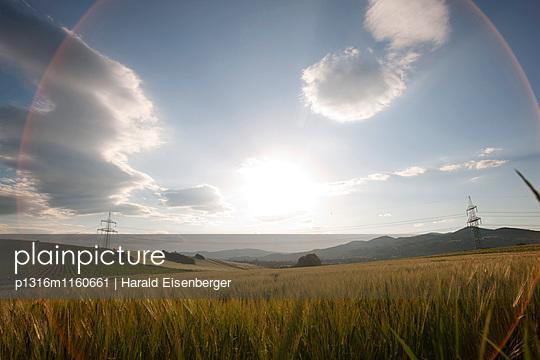 Felder mit Strommasten, Hartberg, Steiermark, Österreich - p1316m1160661 von Harald Eisenberger