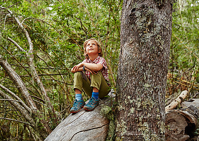 Chile, Puren, Nahuelbuta National Park, boy sitting on a tree in forest looking up - p300m2070620 by Stefan Schütz