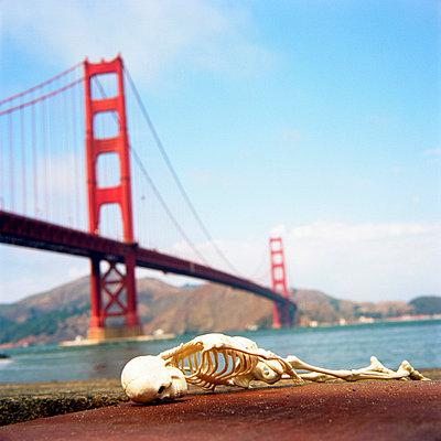 Skelett vor Golden Gaten Bridge - p3420242 von Thorsten Marquardt
