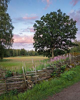 p352m1349340 von Gustaf Emanuelsson