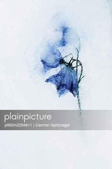 p992m2294611 by Carmen Spitznagel