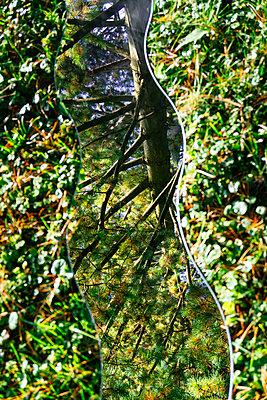 Spiegelung der Natur - p728m1193637 von Peter Nitsch