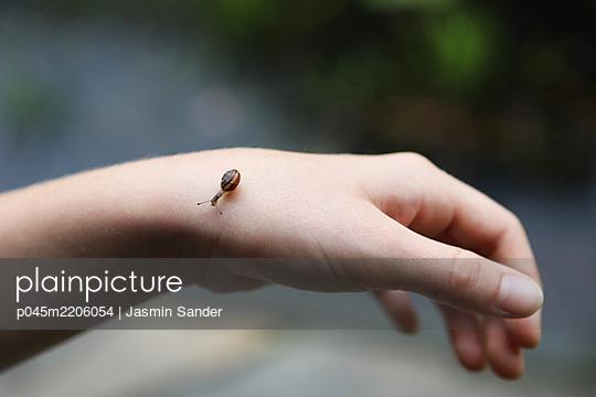 p045m2206054 by Jasmin Sander