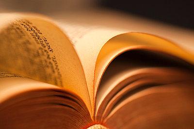 Die Bibel - p3300240 von Harald Braun