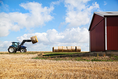 Tractor carry bale of hay - p312m956678f by Lina Karna Kippel