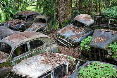 Car cemetery - p1354m2288120 by Kaiser
