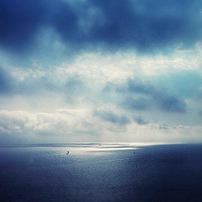 Spot light - p1240m1057479 by Adeline Spengler