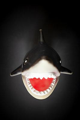 Shark - p1657m2301069 by Kornelia Rumberg