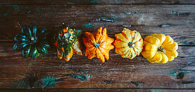 Row of five Ornamental pumpkins on wood - p300m1581583 von Giorgio Fochesato
