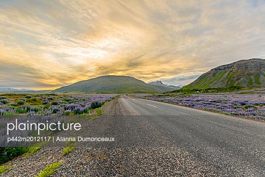 p442m2012117 von Alanna Dumonceaux