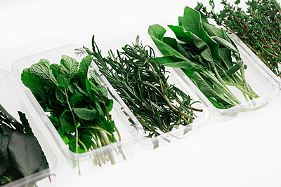 Variety of herbs in containers on white background - p301m1101947f by Norman Posselt