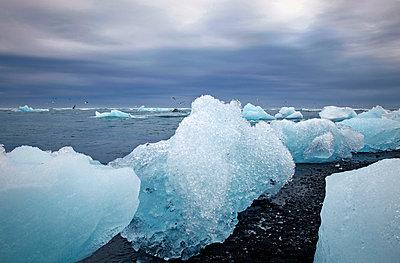 Eisschollen am Strand - p382m1074176 von Anna Matzen