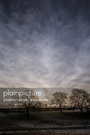 Farmland with trees in a frosty landscape  - p1047m1124196 by Sally Mundy