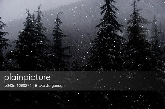 p343m1090274 von Blake Jorgenson