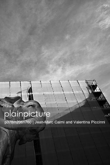 p378m2061760 von Jean-Marc Caimi and Valentina Piccinni