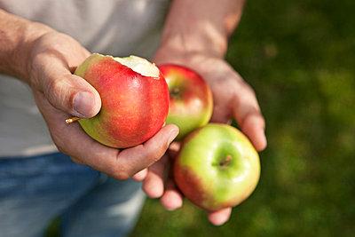 Three apples - p981m881551 by Franke + Mans