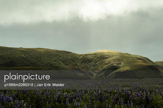 Sleeping mountain - p1585m2285318 by Jan Erik Waider