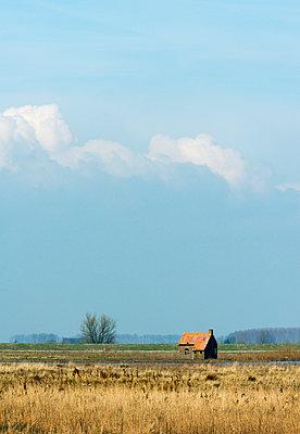Zuid-Holland - p1132m1008034 by Mischa Keijser