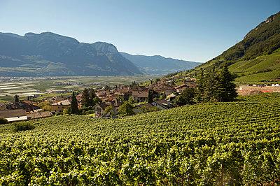 South Tyrol - p1259m1064554 by J.-P. Westermann