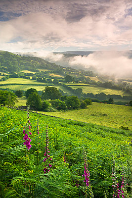Mist hanging over countryside near Bwlch, Brecon Beacons National Park, Powys, Wales, United Kingdom, Europe - p8713060 by Adam Burton
