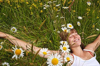 Auf der Blumenwiese - p888m955431 von Johannes Caspersen