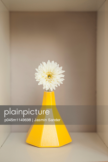 Blume in Designvase - p045m1149698 von Jasmin Sander