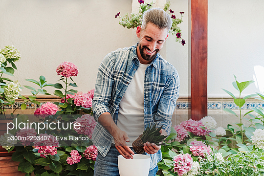 Smiling bearded man putting plant in flower pot at backyard - p300m2293407 by Eva Blanco